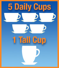 5 daily cups + one tall cup