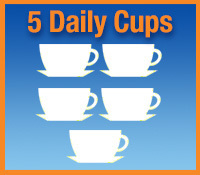 4 daily cups